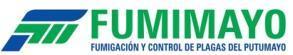 fumimayo